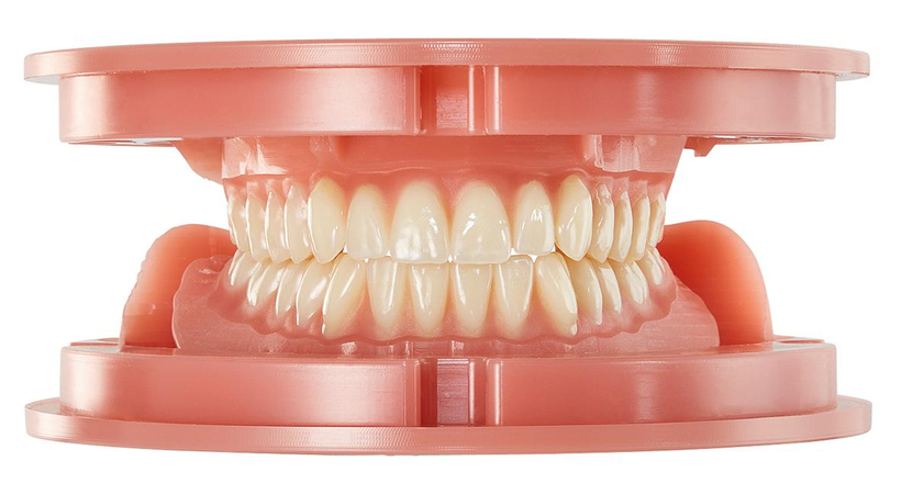 Baltic Denture System<sup>®</sup>